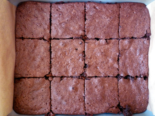 cocoa chocolate brownies